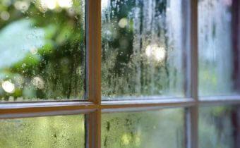 Blog - Foggy Windows